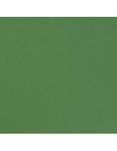 Cardstock pine