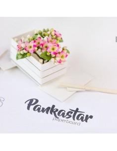 Cartón ligero Pankastar 1,5...